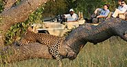 Kruger Park Travel: Kruger National Park History