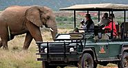South Africa Safari Holidays – Kruger Park Travel – Medium