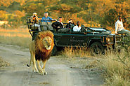 South Kruger Recreation area - The Actual Africa | Posts by krugerparktravel | Bloglovin'