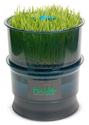 Tribest FreshLife Sprouter - Automatic Wheatgrass and Sprouter System