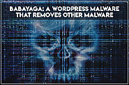 BabaYaga: Malware That Removes Its Competition