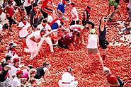 1.5 lakh tomatoes are quashed during the festival
