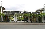 The London Zoo