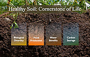The ABC of Soil Science