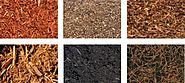 Whats the best soil conditioner for your garden