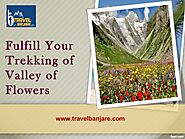 Fulfill Your Trekking of Valley of Flowers