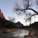 Sunset at Zion #zion #nationalpark #sunset #river #tree #mountains