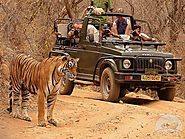 Luxury Golden Triangle Tour Packages