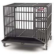 Best Heavy Duty Dog Crate - Bag The Web