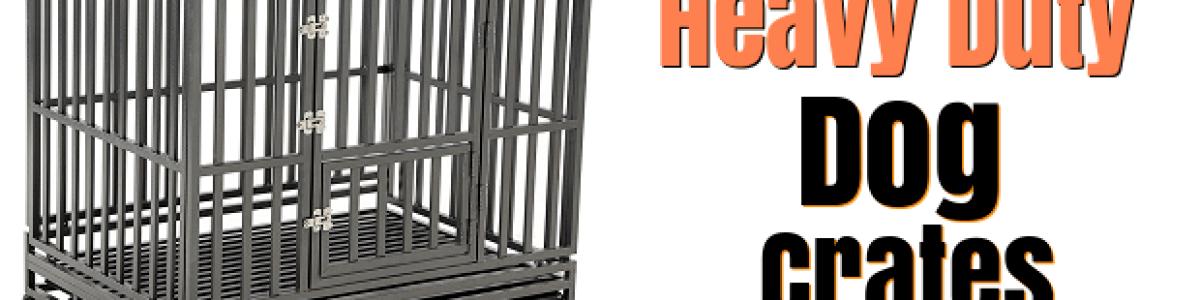 Headline for Best Heavy Duty Dog Crate and Kennel