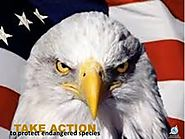 Protect the Endangered Species Act Against Sneak Attacks