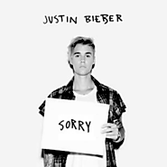 "7. ""Sorry"" by Justin Bieber."