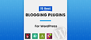 15 Blog WordPress Plugins You Actually Need [Recommended]