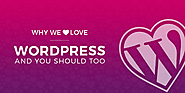 WordPress for Website Development: 9 Reasons Why We Love & Recommend
