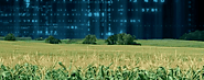 Agriculture Database in USA & UK | B2B Data Quest
