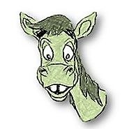 Guernsey Donkey SEO Off-Page Digital MarketingBusiness Service in Guernsey, Channel Islands