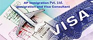 Website at https://www.apimmigrations.com/