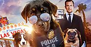 Show Dogs 2018 Movie Download MKV Full HD MP4
