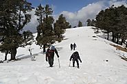 Nag Tibba Trek 2 Days - Renok Adventures