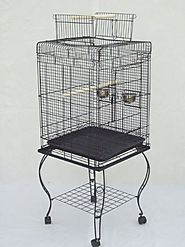 "Brand New Parrot Bird Cage Cages Play w/Stand 20x20x58 ""Black"""
