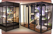 Beautiful Custom Bird Cages & Reptile Cages : bird cage, snake cages, parrot cages, birdcages, iguana cage, custom ca...