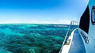 Private Port Douglas Charter Boat – Great Barrier Reef Trips