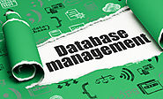 DBMS Users Email Lists | B2B Data Services