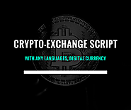 Cryptocurrency exchange script supports many digital currency and languages: