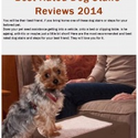 Best-Rated-Dog-Stairs-Reviews-2014-