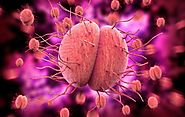 Gonorrhea may become Untreatable