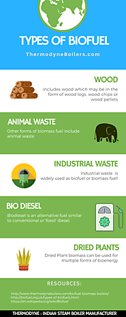 Types of Biofuel or Biomass Fuel