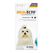 Buy Bravecto for dogs online at cheap price