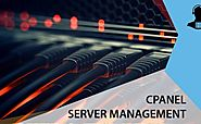 Learn more about Server management system of cPanel