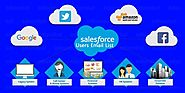 Salesforce Users email lists