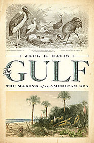 The Gulf: The Making of an American Sea, by Jack E. Davis