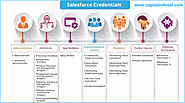 Salesforce Career Path For Beginners | Different Job Roles and Responsibilities