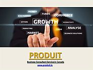 Produit – Best Business Consultant in Canada