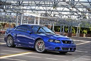 Ford SVT 03-04 Cobra