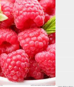 Best Raspberry Ketone Supplement Review