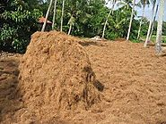 """ For peat sake choose another compost "" 