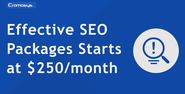 Cromosys introduces effective SEO packages for startup business starting at $250 per month