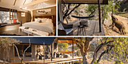 Garonga Safari Camp - Makalali Conservancy, South Africa