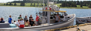 Barry Doucette's Deep Sea Fishing PEI - PEI Deep-Sea Fishing At It's Best!