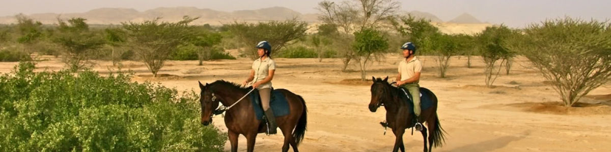 Headline for Benefits of Horse Back Riding - There's More to it than being a Sport
