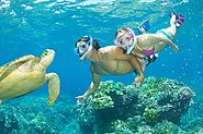 Best Snorkeling Gear Sets Reviews on Flipboard