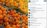 How to Use Instagram for Content Marketing