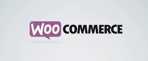 Headline for Our Best WooCommerce Extensioins