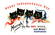Does Your Cat Hate July 4th Fireworks Or Not? By Clyde, feline editor and author.