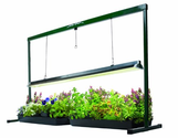 Hydrofarm JSV4 4-Foot Jump Start T5 Grow Light System