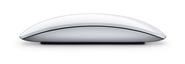 Apple (India) - Magic Mouse - The world's first Multi-Touch mouse.